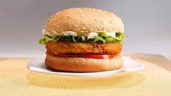 <b>汉堡王西式快餐加盟项目如何赚钱的?</b>